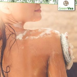 Greenvea kit zéro déchet salle de bain sac à savon